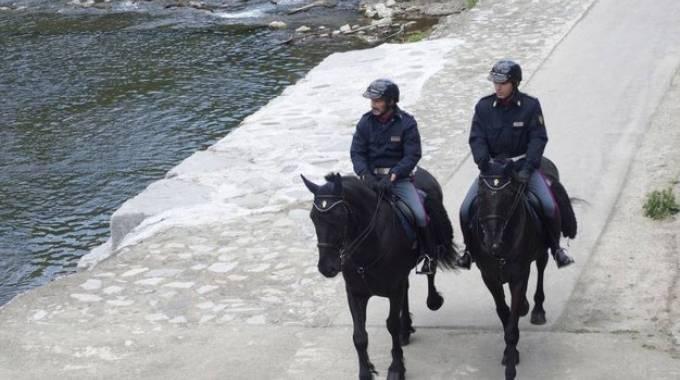 Prato: Polizia a cavallo cattura uno scippatore - Cavallo ...