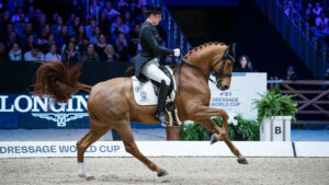 Fredric Wandres e Duke of Britain (80.015%) © FEI / Eric Knoll
