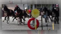 Fotofinisch Gran Premio di trotto Campionati italiano Finale dei 4 anni Bologna ©Hippogroup Bologna