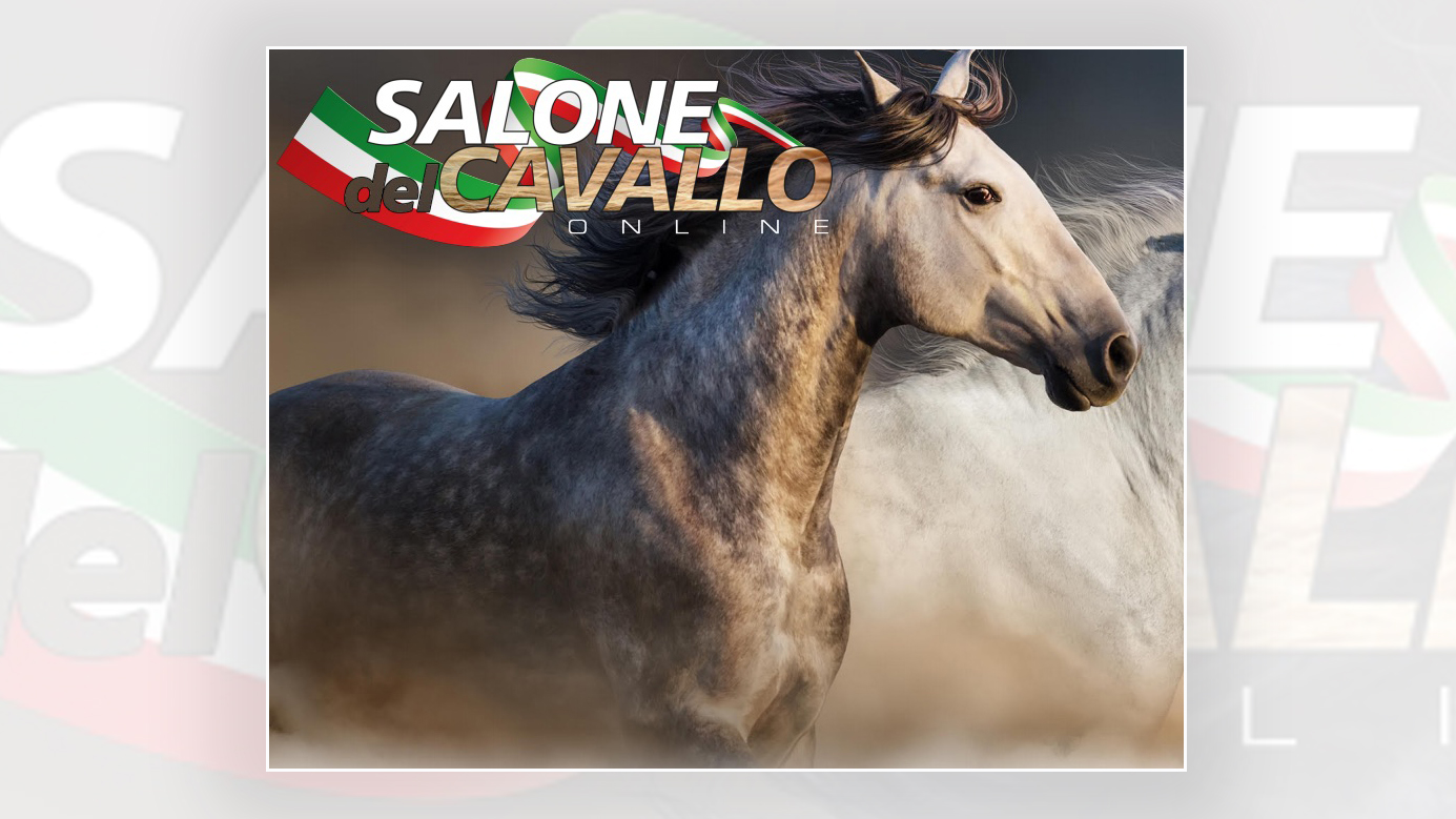 """Live Instagram: 28 aprile ore 17:00 Giancarlo Doardo racconta """"Il salone del Cavallo 2020"""""""