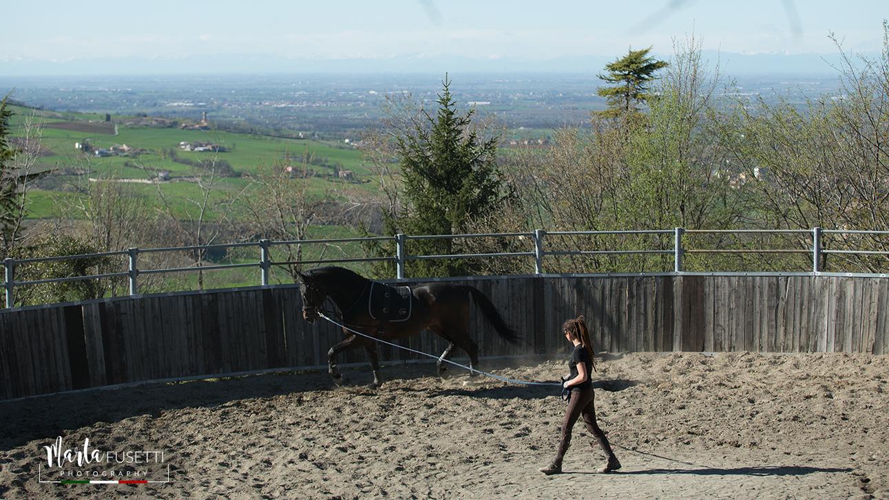 Le linee guida per lo sport del Dpcm del 26 Aprile e gli Sport equestri