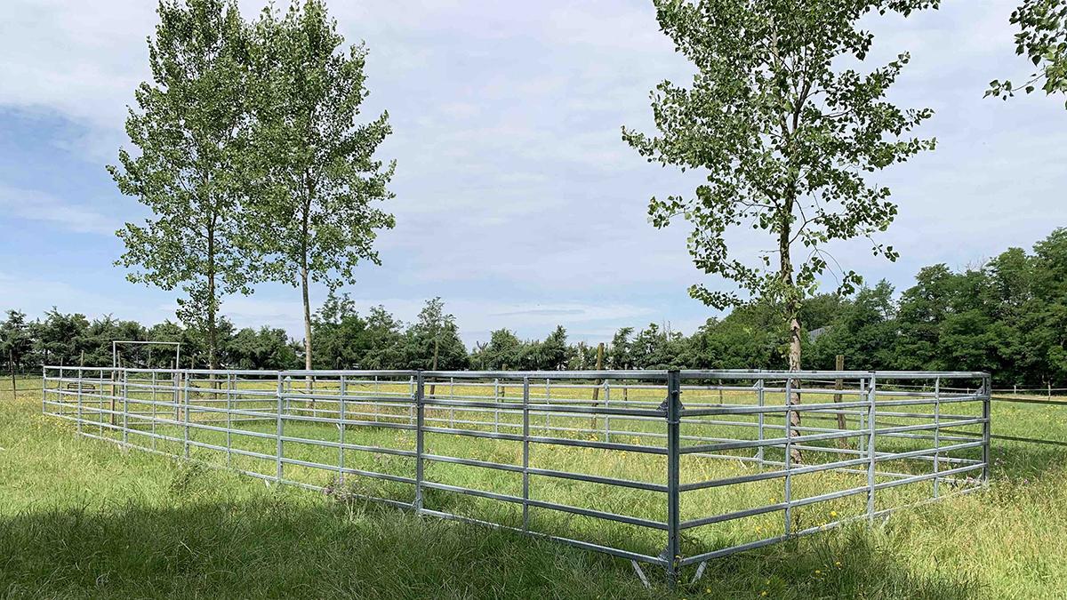 Recinzioni Badi Farm: sicurezza e comfort per il cavallo ©Badi Farm