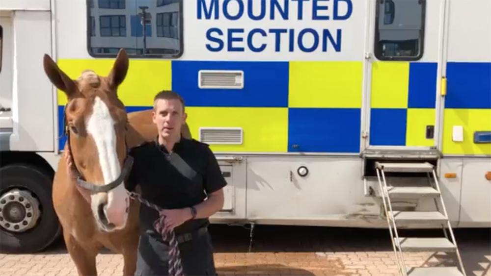 Hampshire Constabulary