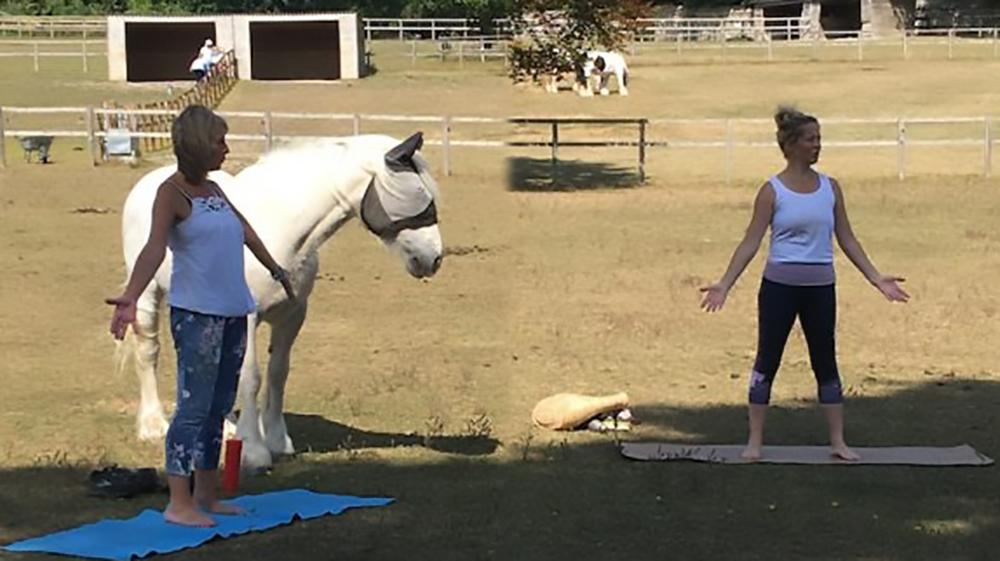 Yoga con i cavalli