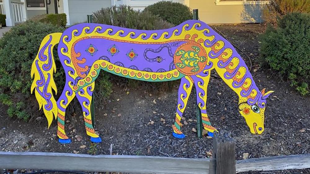 California_idea cavalli d'arte