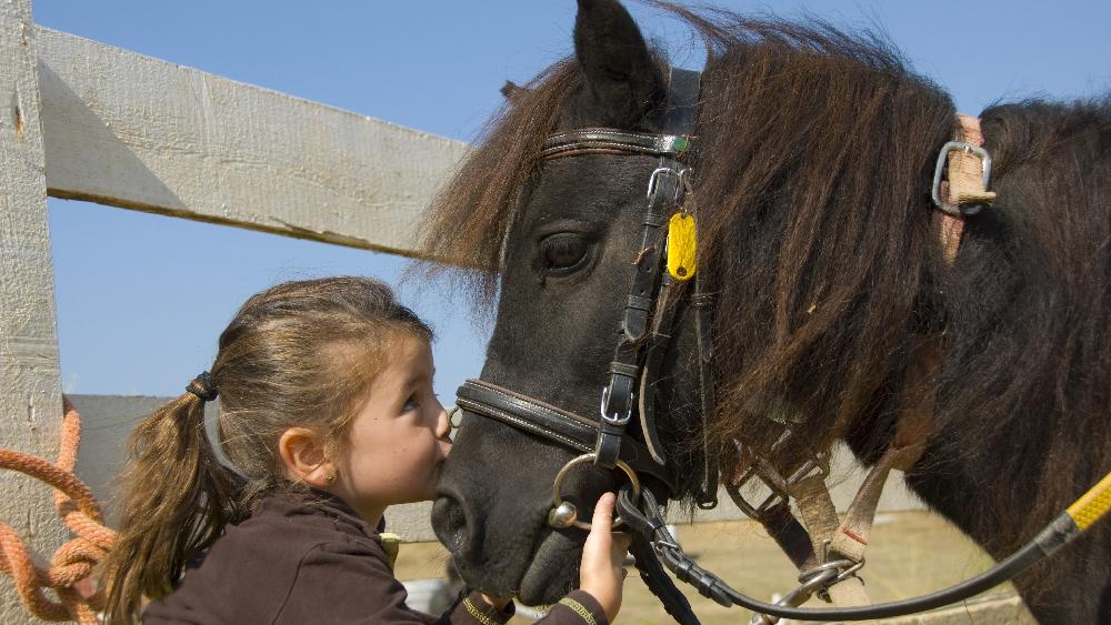 _Inclusione_pony_bambini